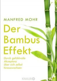 Cover Bambus-Effekt